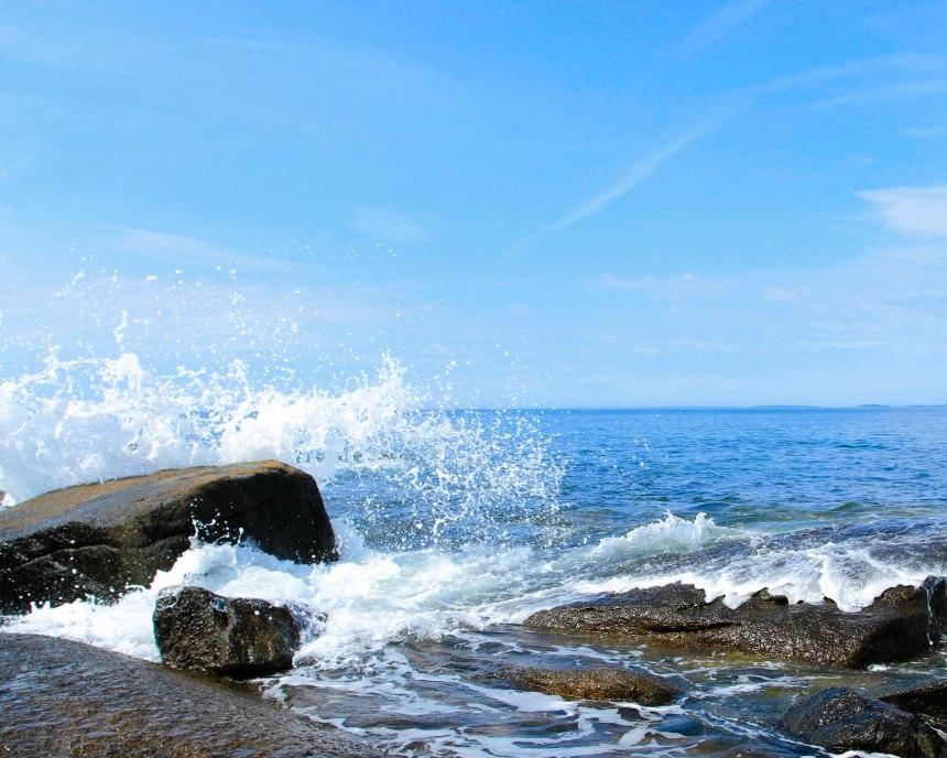 Maine rocky shore